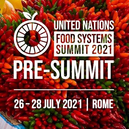 United Nations Food Systems Pre-Summit in Rome @ Rome, Italy | Rome | Lazio | Italy